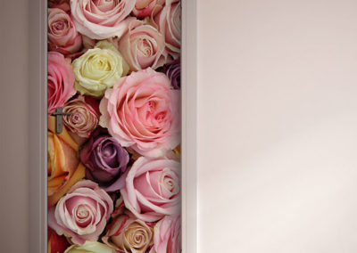 20312 Colorful Roses