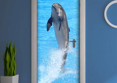 20706 Dolphin