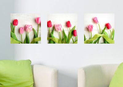 46009 Tulips
