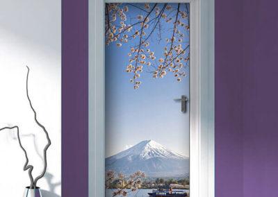 20331 Fuji Battello
