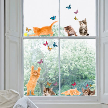 64001 Cats M