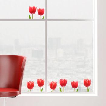 69003 Tulips S