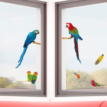69004 Parrots S