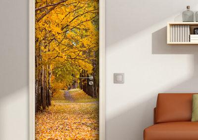 20214 Autumn Trees