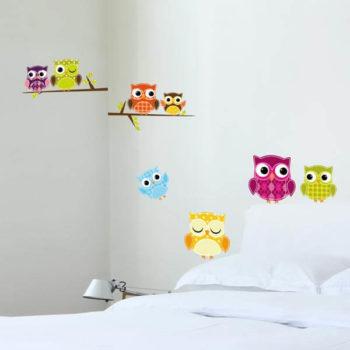 54329 Owls M