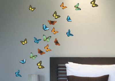 59455 Colourful Butterflies S