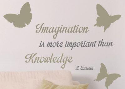 62131 Imagination M