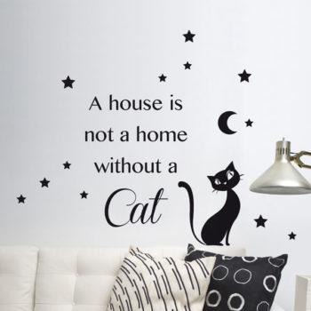 62137 Cat M
